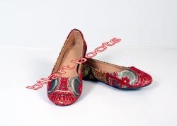 zari-shoes-6